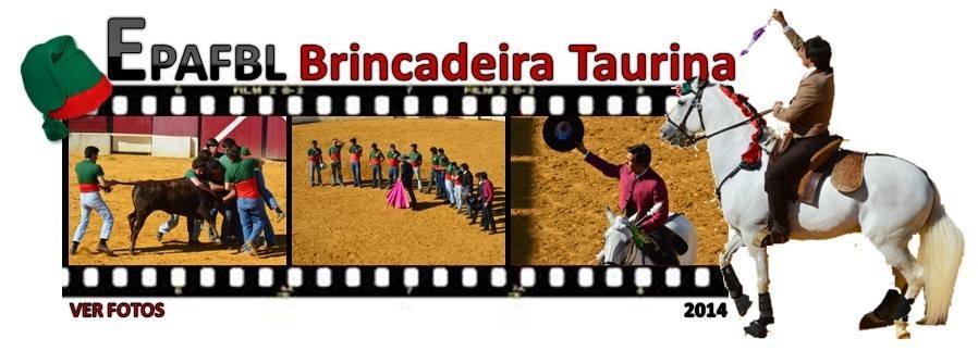 Brincadeira Taurina 2014