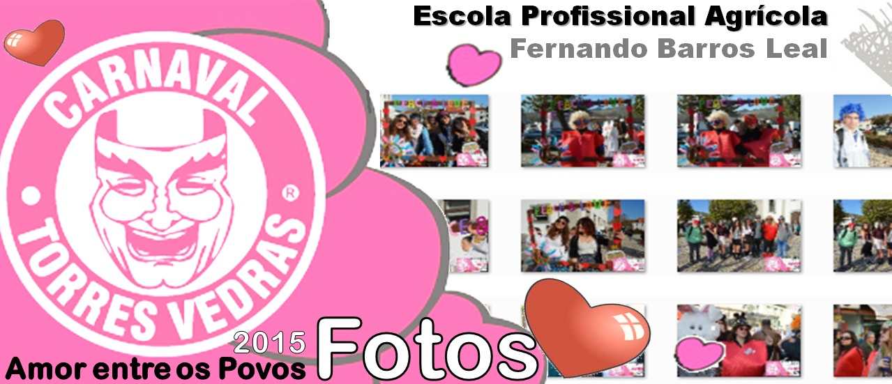 FDotos Carnaval 2015