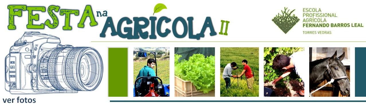 Festa na Agricola -Fotos