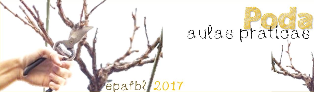 Poda 2017