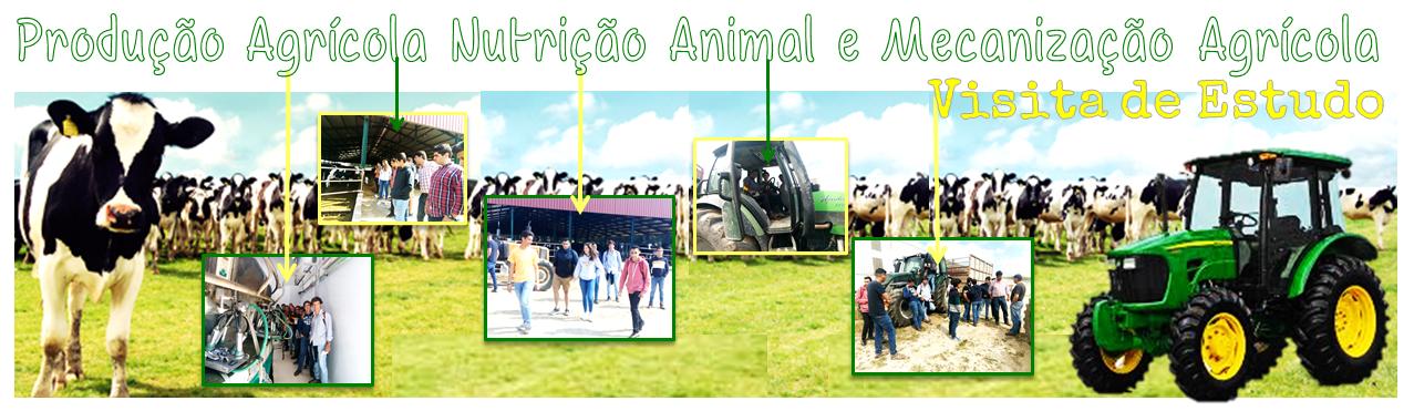 Vista de Estudo Nutrição Animal e Mecanização Agrícola