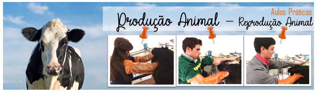 Aulas Práticas - Reprodução Animal Turma 28.ºA e 28.ºB