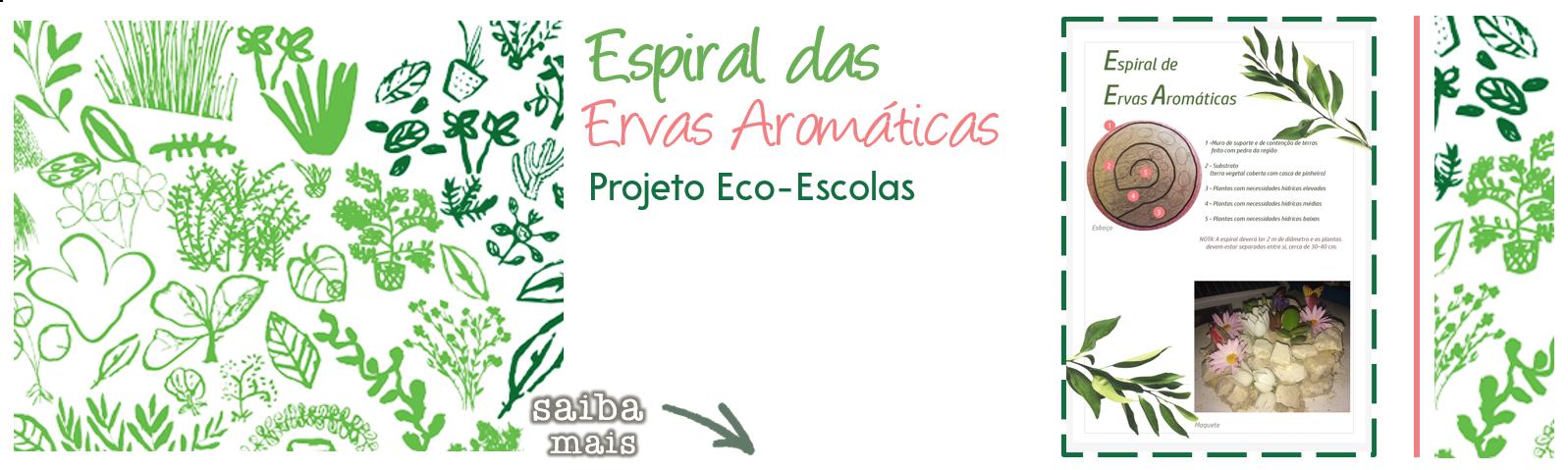 Espiral das Ervas Aromáticas|Projeto Eco-Escolas