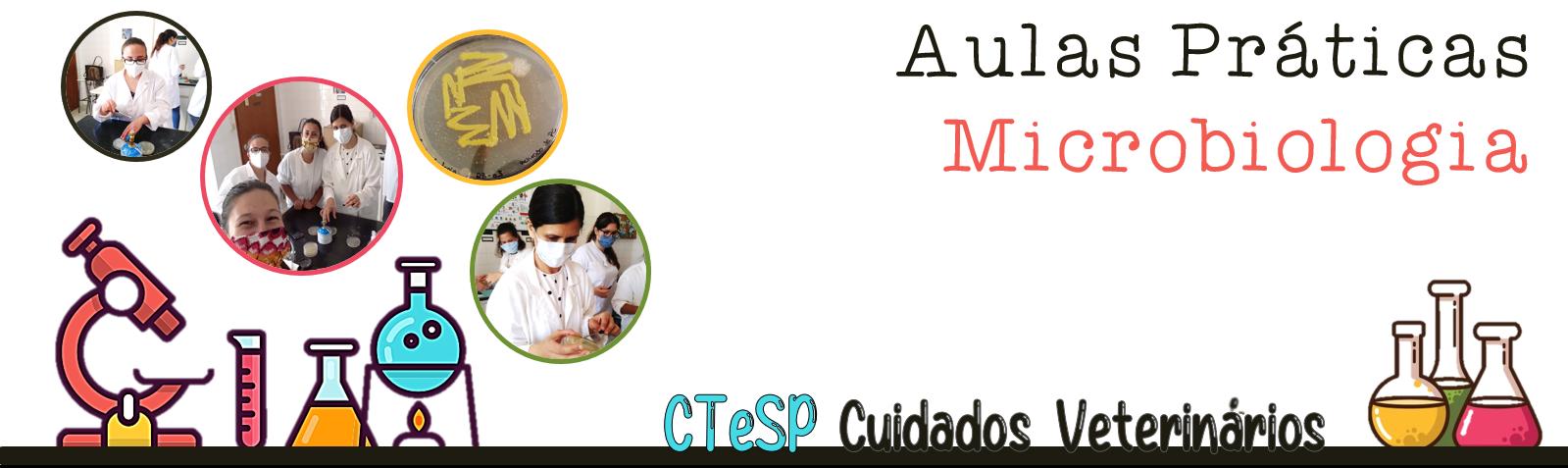 Aulas Prátcas Microbiologia - CTeSP Cuidados Veterinários